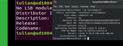 How to view/display Linux version