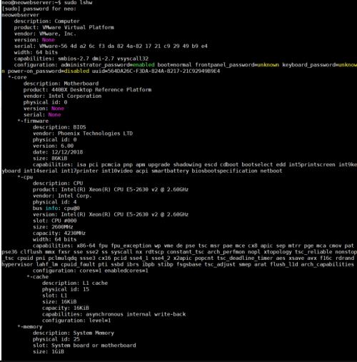 How to display hardware system information on Linux - lshw on Ubuntu server 18.04.4 LTS