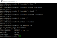 How to check installed and used Python version on Linux